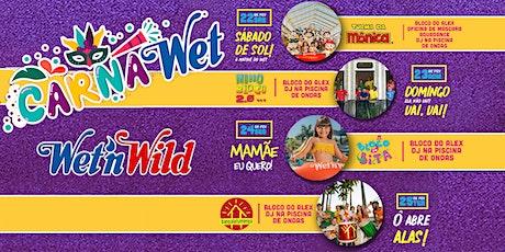CARNAWET - PARQUE WET'N WILD ingressos