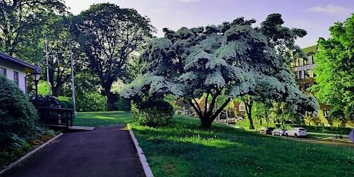 Kew Gardens: Neighborhood Stories