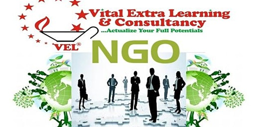 Effective Leadership for Non Governmental Organizations NGOs Professionals