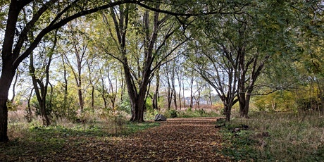 Downsview Park's A Walk in the Park: Unwanted: Invasive Species in the Park tickets