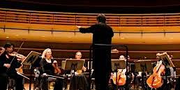 SU Summer Academy: Chamber Orchestra