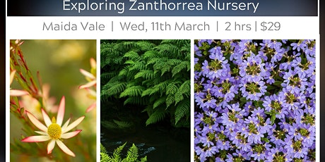 Photo Walk: Exploring Zanthorrea Nursery tickets