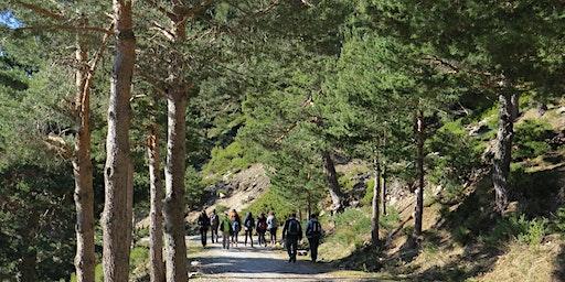 SENDERISMO, ORIENTACION y NATURALEZA: Cabeza Líjar (Sierra de Guadarrama)