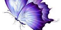 The Lupus I Care Foundation presents A Purple Passion Gala