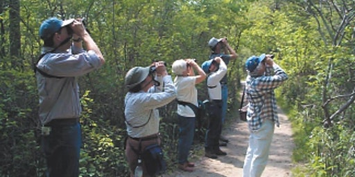 Adult Beginner Birdwalk April 25 2020