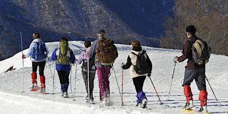 Journée raquettes à neige au Feldberg en Forêt Noire ! billets