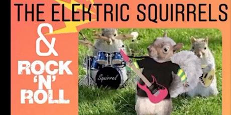 Rock 'n Roll & The Elektric Squirrels tickets