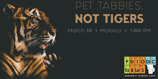 Periodic Tables: Pet Tabbies, Not Tigers