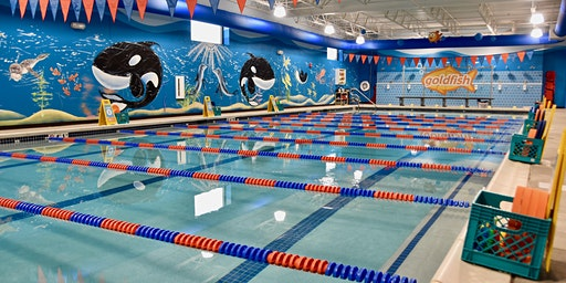 "Spring Break ""Jump Start"" Swim Clinics"