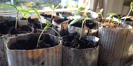 Seed Planting - Free Drop In and Create tickets
