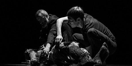 SOMA de JAVIER MARTÍN no Teatro Rosalía Castro entradas