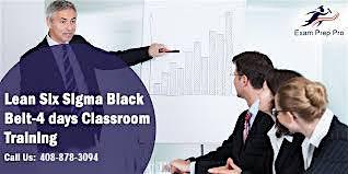 Lean Six Sigma Black Belt Certification Training  in Edison