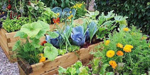 Home Gardening 101 Workshop