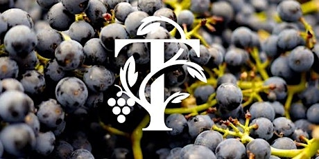 Explore our Winery - Tour & Tasting Session tickets