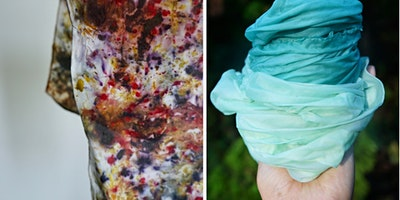 Learn Natural Dyes on an Organic Farm
