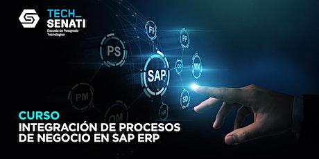 Curso: Integración de Procesos de Negocio en SAP ERP entradas