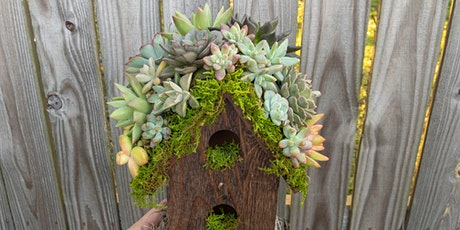 Make-N-Take: Succulent Topped Birdhouse tickets