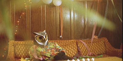 JayWood | Vinyl Wings | Broken Keys