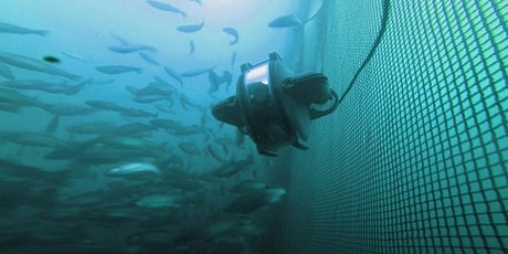 Ocean Connector: Fish Farms - Inspections Below the Surface tickets