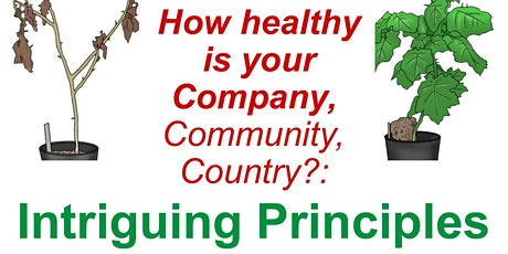How Healthy Is Your Company?: Intriguing Principles  from Nature tickets