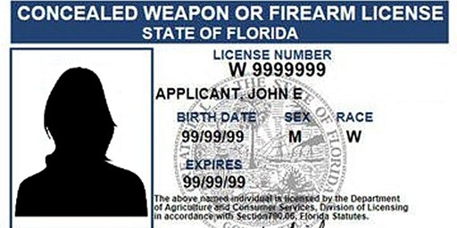 Concealed Carry Class -Minimum Standards CCW-100
