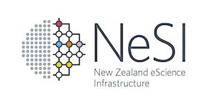Webinar: Make the most of your NeSI HPC allocation