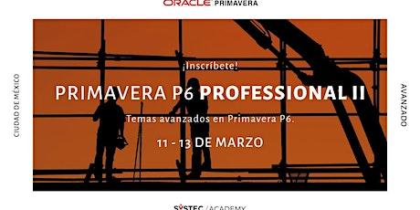 Primavera P6 Professional II tickets