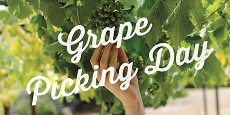 Grape Picking Day tickets