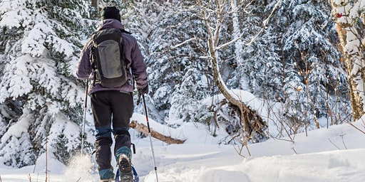 Ski and Snowshoe Tour and Concert Weekend Retreat