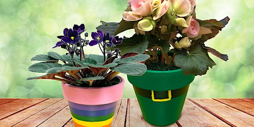 St. Patrick's Workshop for Kids -  Painted Flower Pot: Frankfort, IL