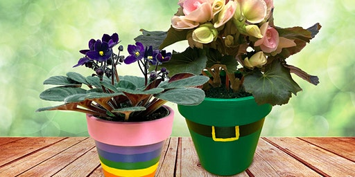 St. Patrick's Workshop for Kids -  Painted Flower Pot: St. John, IN