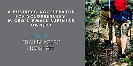 Trailblazers Business Accelerator Program 1.3 tickets
