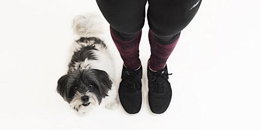 HIIT Cardio with your Dog (6-weeks)