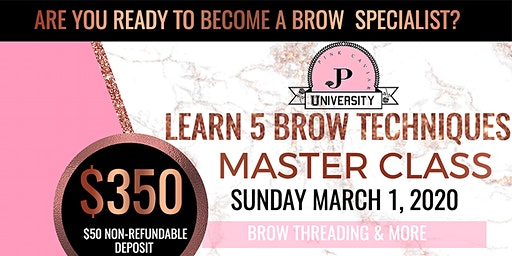 Learn 5 Brow Techniques Master Class $350