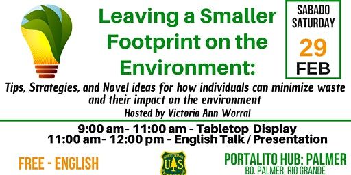 Leaving a Smaller Footprint on the Environment: Tips, Strategies, and Novel