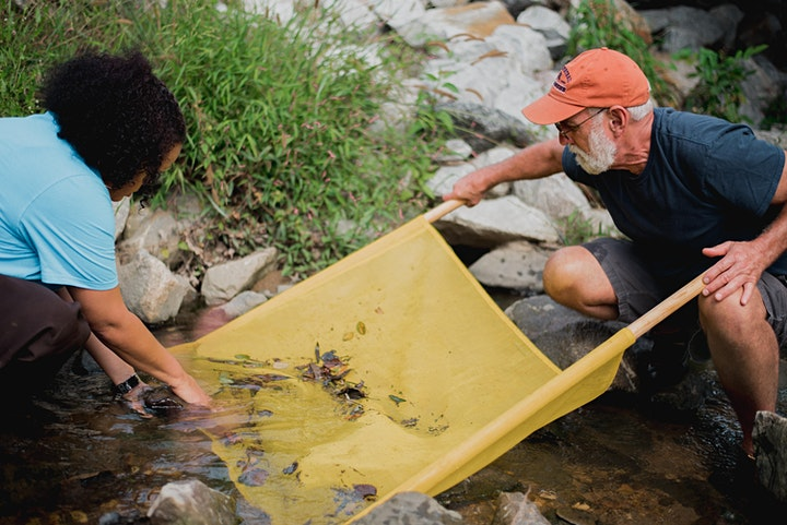 Virginia Save Our Streams - Covington, VA image
