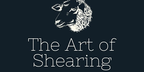 The Art of Shearing: A Sheep to Shawl Festival
