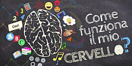 Come funziona il mio cervello?  biglietti