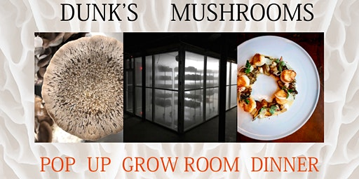 POP UP GROW ROOM DINNER