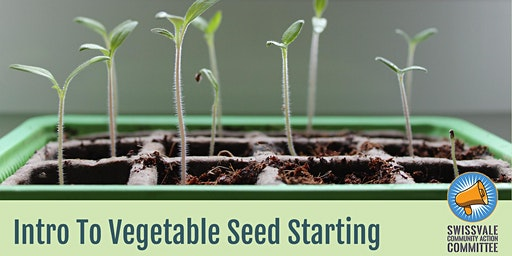 Intro to Vegetable Seed Starting