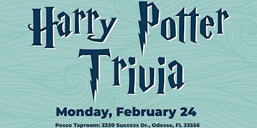 Harry Potter Trivia at Big Storm PASCO