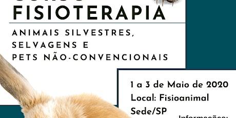 Fisioterapia em Animais Silvestres,  Selvagens e Pets Não-convencionais ingressos