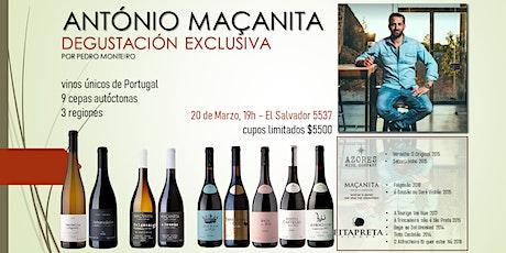 Degustacion Vinos de Portugal - Enólogo António Maçanita entradas