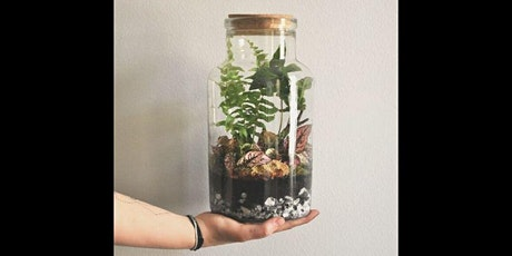 Seed to Soul: Terrarium Making tickets