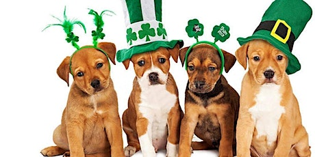 St. Pawtrick's Pup Crawl tickets