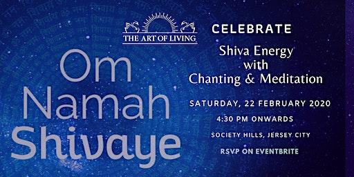 Art Of Living  Maha Shiv Ratri Special Satsang