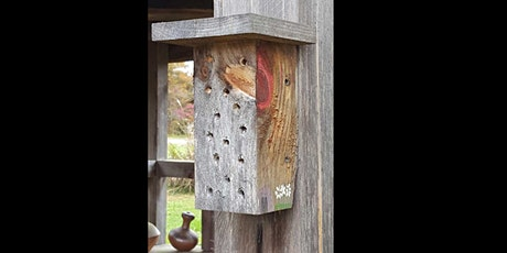 Build Your Own Native Bee Hotel tickets