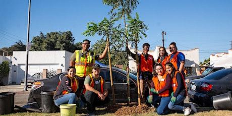 TreePeople Volunteer Summit tickets