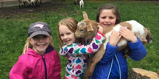 Goats and Giggles - SPRING BREAK! 4/26 | 10:00am - 11:00am |