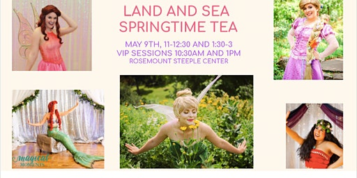 Land and Sea Springtime Tea - A Twin Cities Princess Party
